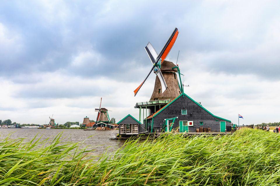 Amsterdam wiosną najlepiej zwiedzać rowerem.