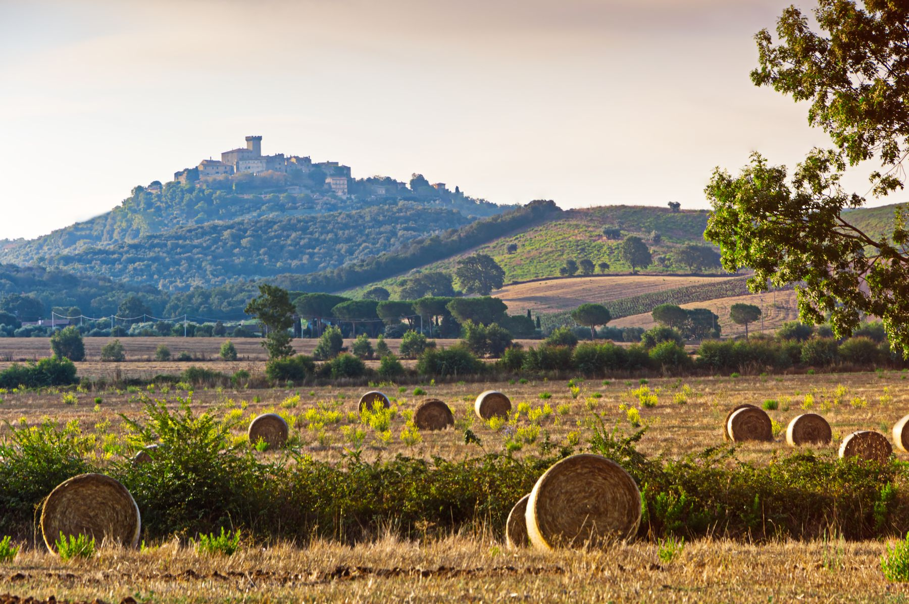 travel to Italy and enjoy the Italian countryside