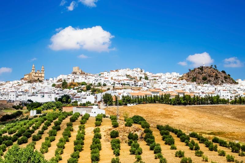 Pueblo blanco de Olvera en Cádiz Andalucía