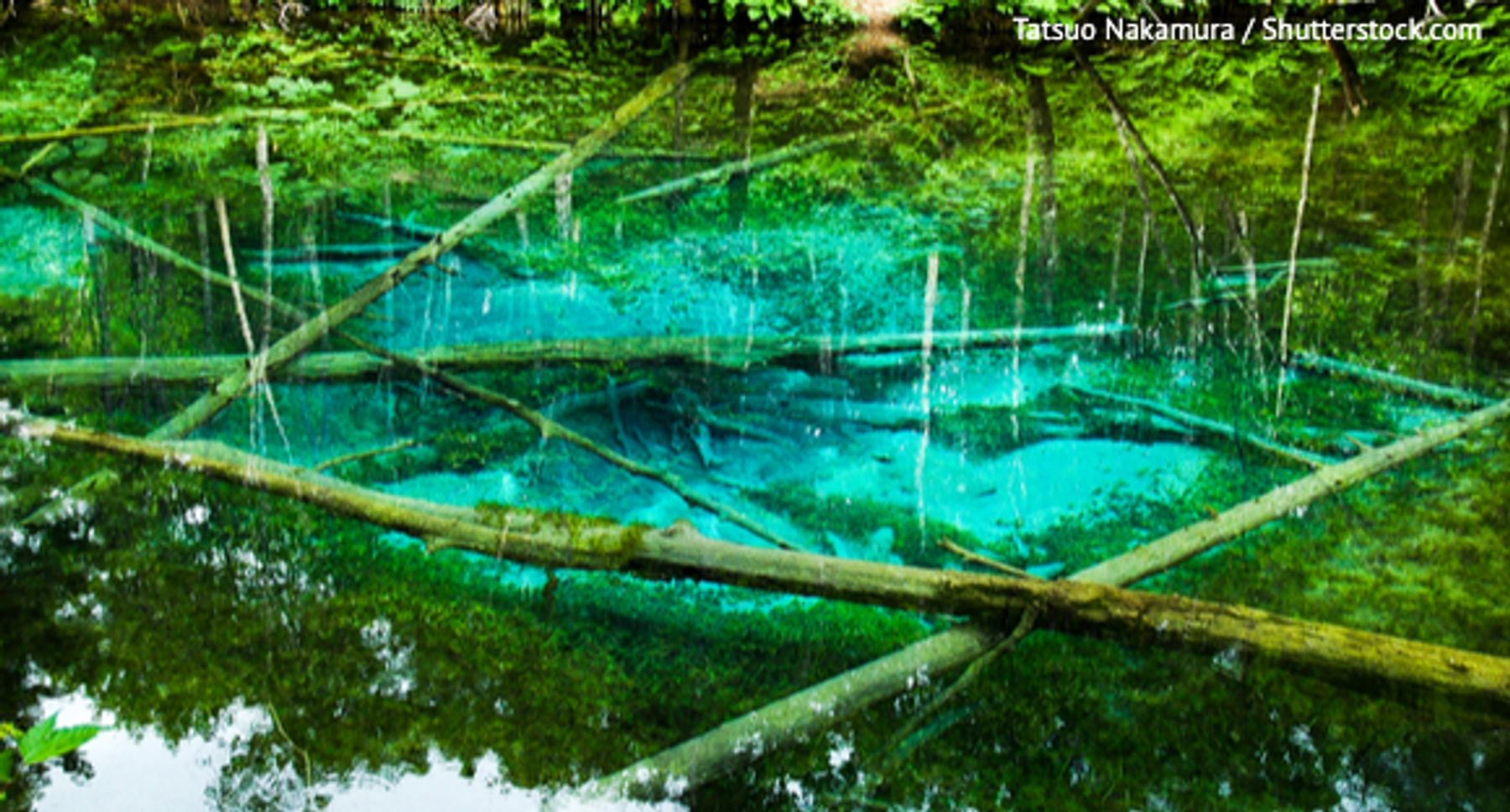 北海道 知床 神の子池