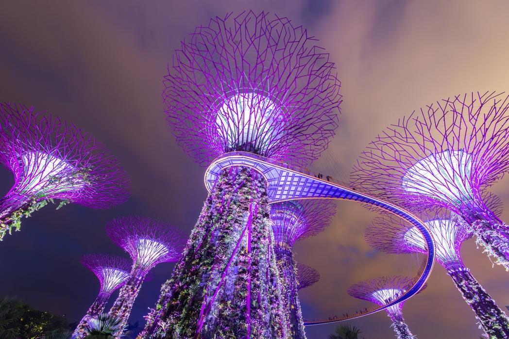Τα μωβ φουτουριστικά δέντρα του Gardens by the Bay - city-hopping ταξίδι στη Σιγκαπούρη