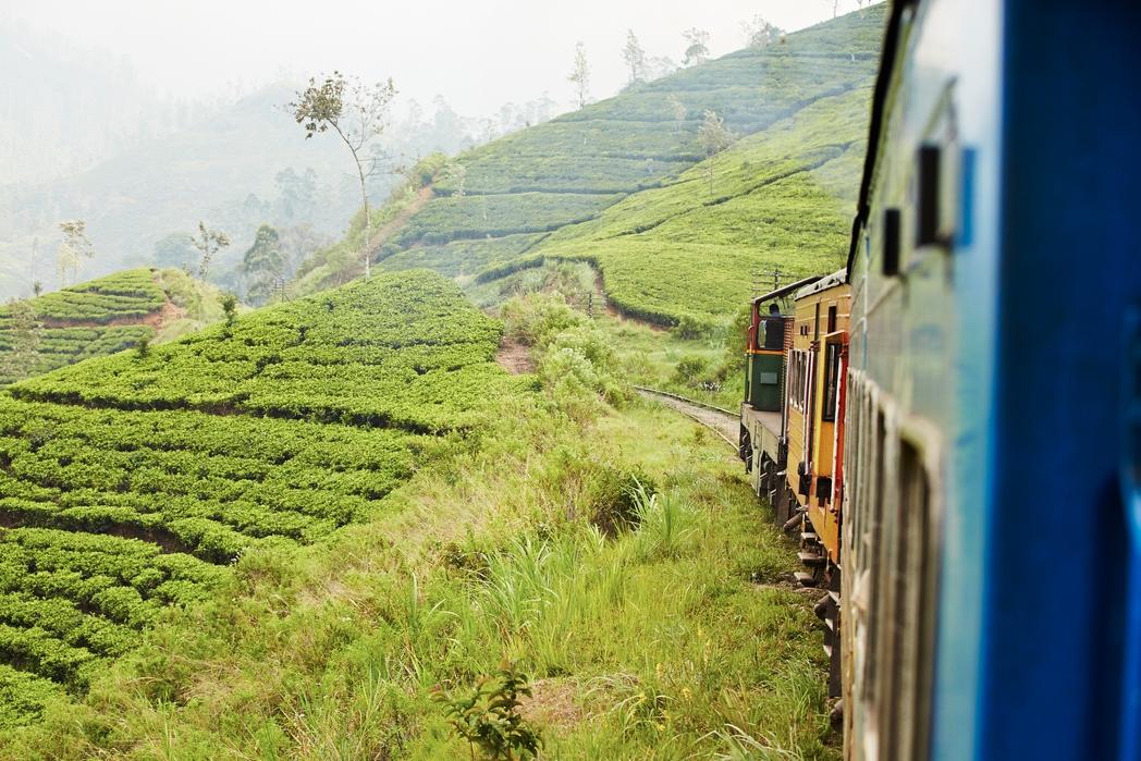 Τρένο διασχίζει φυτείες τσαγιού στη Σρι Λάνκα