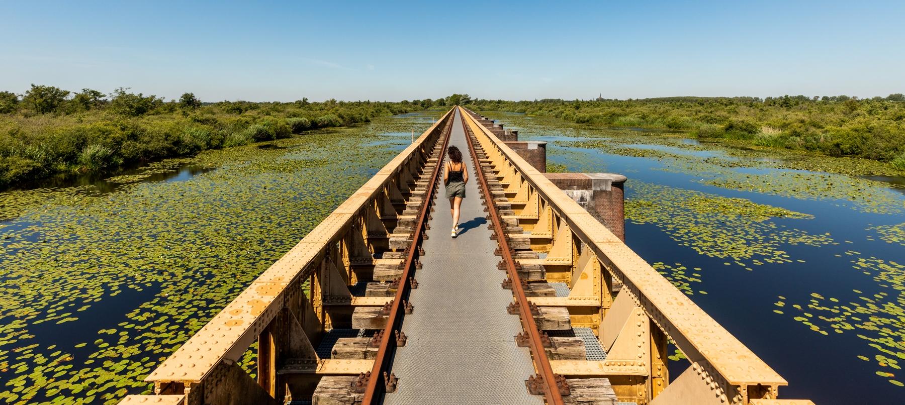 Onbekende plekken in Nederland Moerputtenbrug in natuurgebied Moerputten Noord Brabant