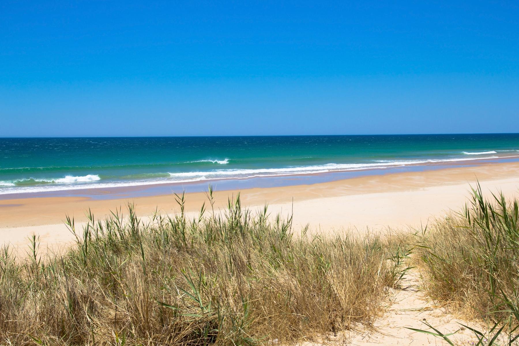 Cambiar las vacaciones de verano en una playa de Cádiz por una escapada de invierno, es tendencia este 2021