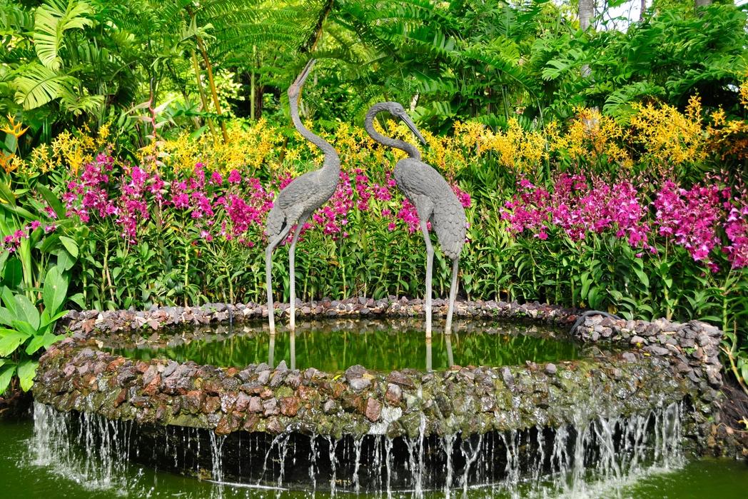 Πουλιά σε λίμνη στους Βοτανικούς Κήπους - πώς να περάσετε 72 ώρες στη Σιγκαπούρη