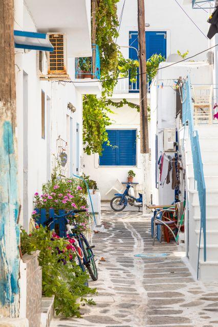 Ασβεστωμένο σοκάκι με λουλούδια και σπίτι με μπλε παράθυρα στην Πάρο