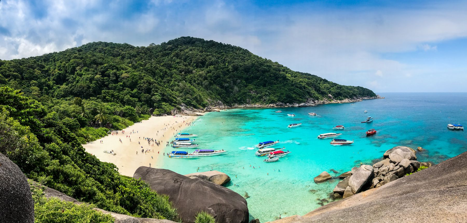 View of a cove in Phuket. Tropical trees cover the hills, all the way down  to a small white sand beach lapped by turquoise waters studded with speedboats.