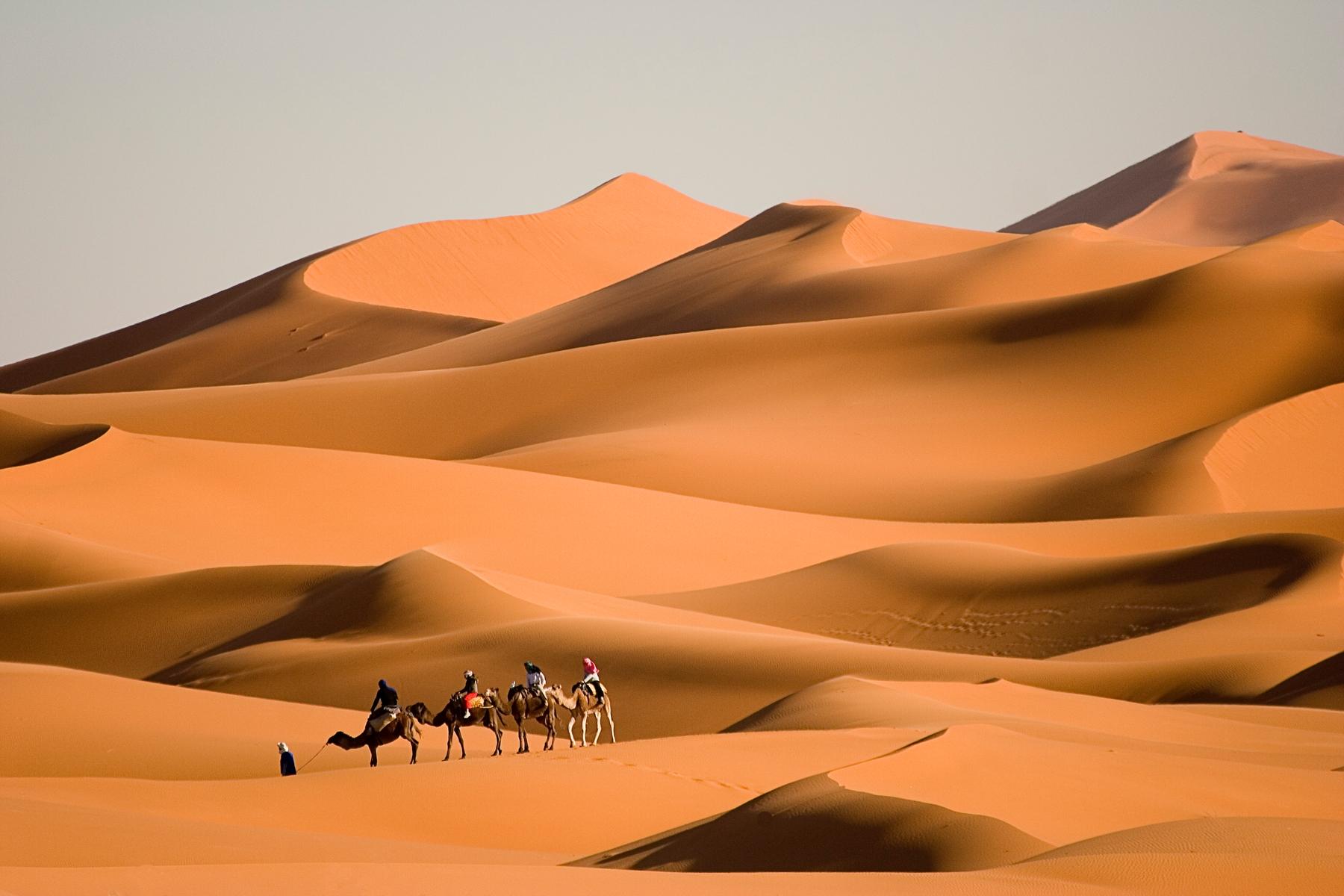 Ein spannendes Länder-Faktum über die Sahara: Sie ist die größte Wüste der Welt