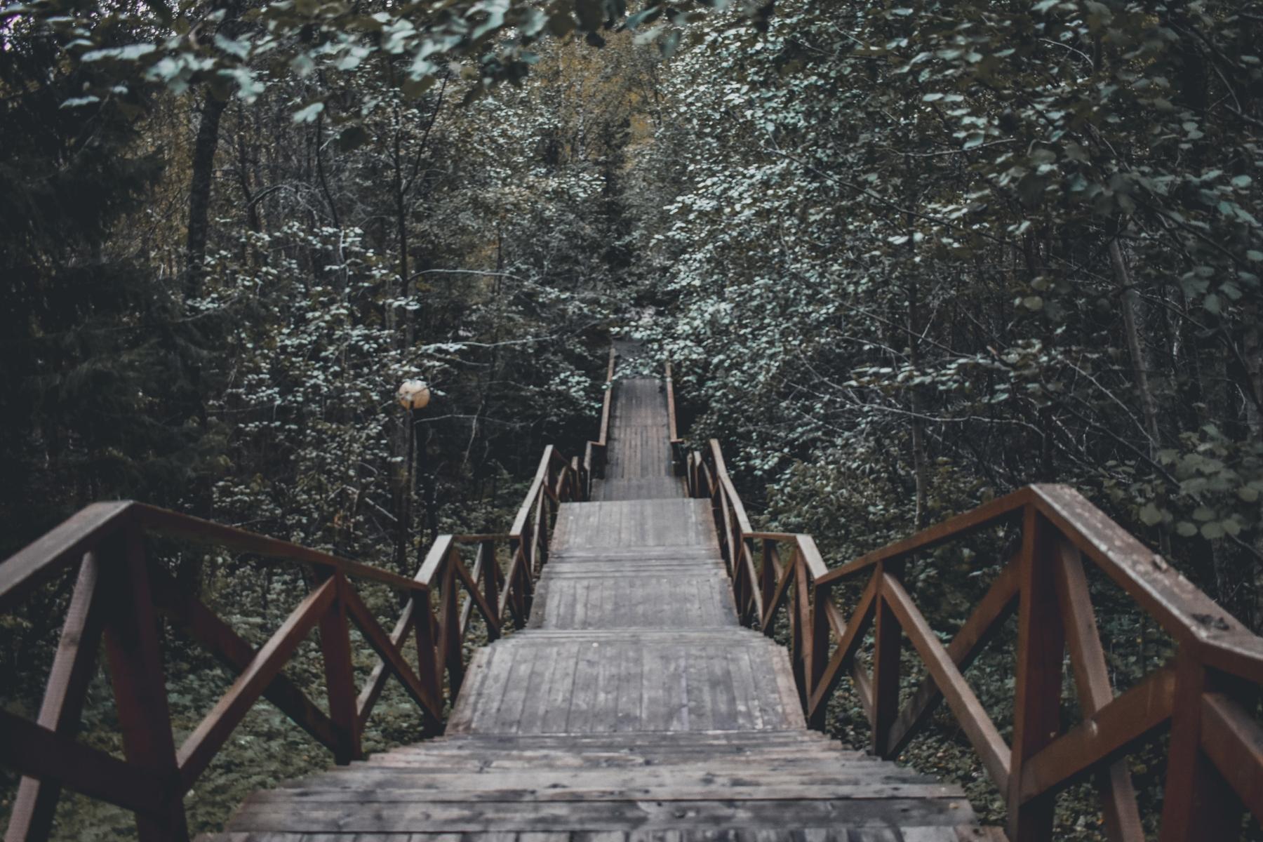 Лестница к водопаду Кивач — отдых в Карелии летом
