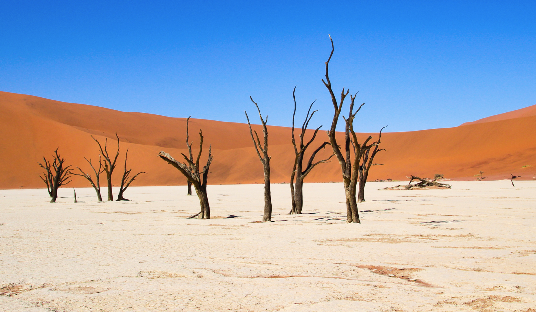 Deserto da Namíbia, um dos países abertos para turistas brasileiros.