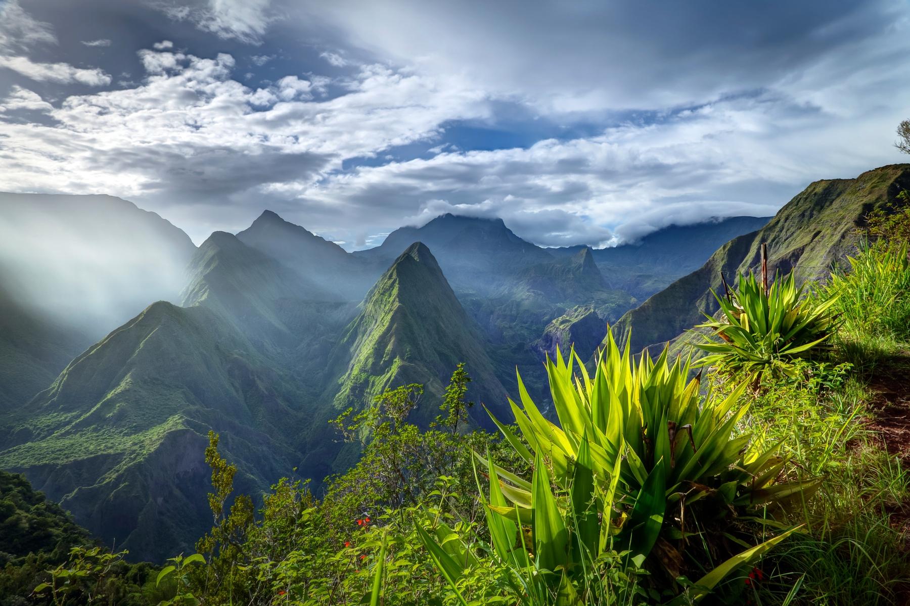 Quand voyager à La Réunion ?