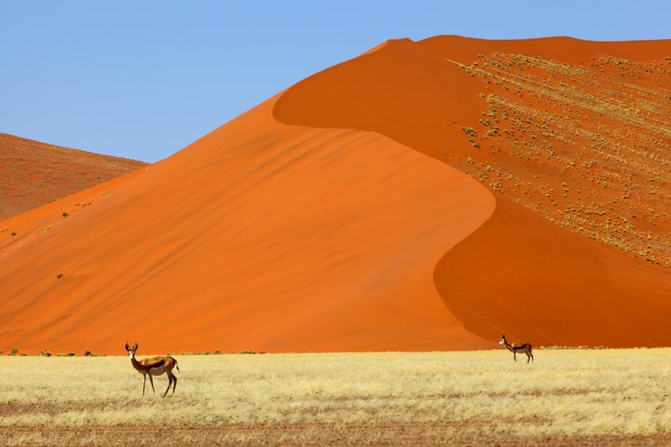Ναμίμπια