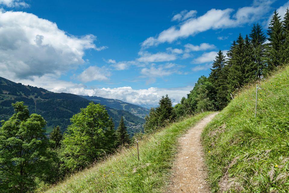 Μονοπάτι στο βουνό, Καστανίτσα