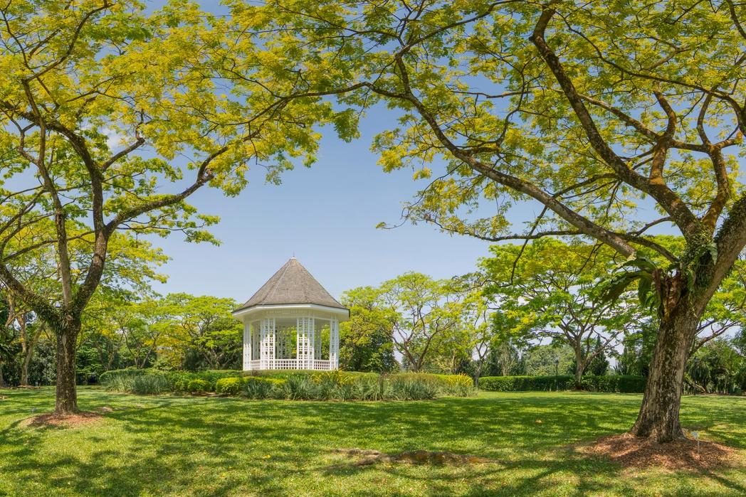 Οι γαλήνιοι Βοτανικοί Κήποι της Σιγκαπούρης - πώς να περάσετε 72 ώρες στη Σιγκαπούρη