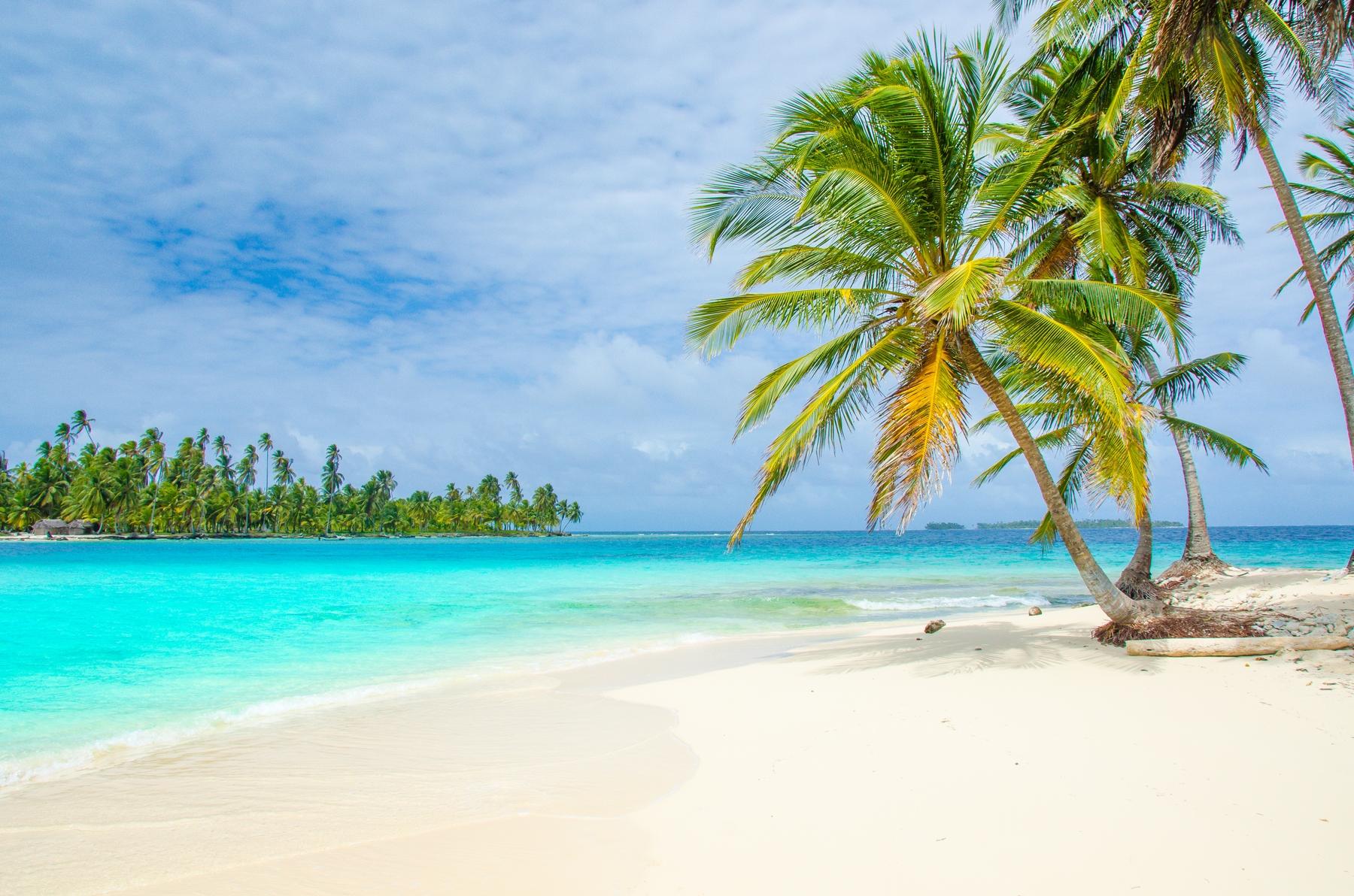 Vakantie Caribbean: tropisch strand met palmbomen en turquoise water