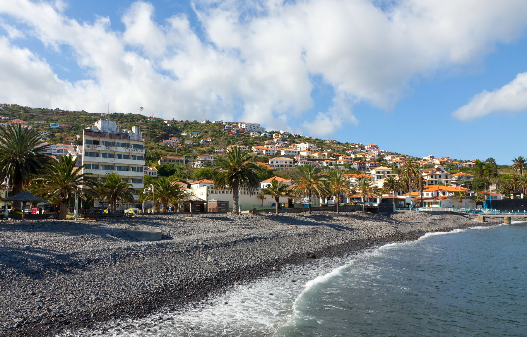 Black sand beach fringed with palm trees and houses in Madeira