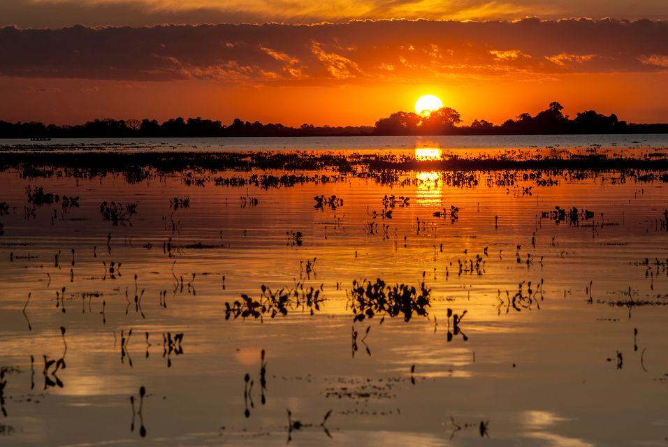 Die schönsten Reiseziele Brasiliens: Pantanal, Mato Grosso & Mato Grosso do Sul