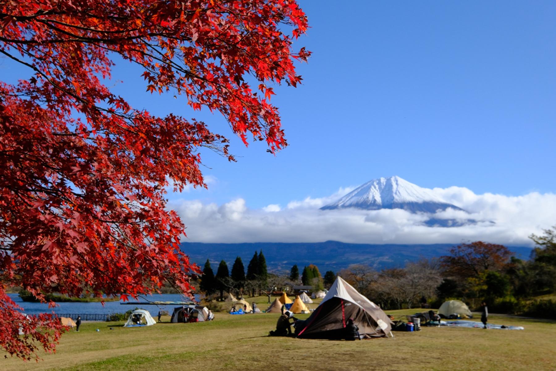 日本自2020年12月28日起至緊急事態宣言解除為止,原則禁止全世界新申請簽證之外國人入境日本,並停止申請「居留通道」(商務目的)入境。