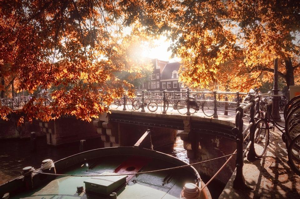 Ποδήλατα καλυμμένα από φθινοπωρινά φύλλα στο Άμστερνταμ