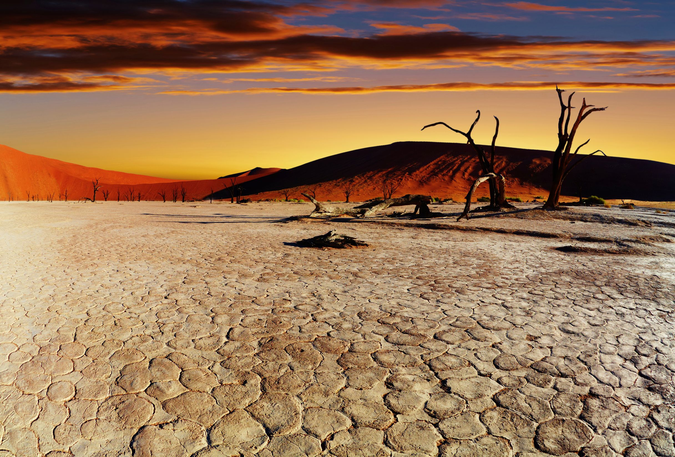 Deserto della Namibia, viaggio in Namibia