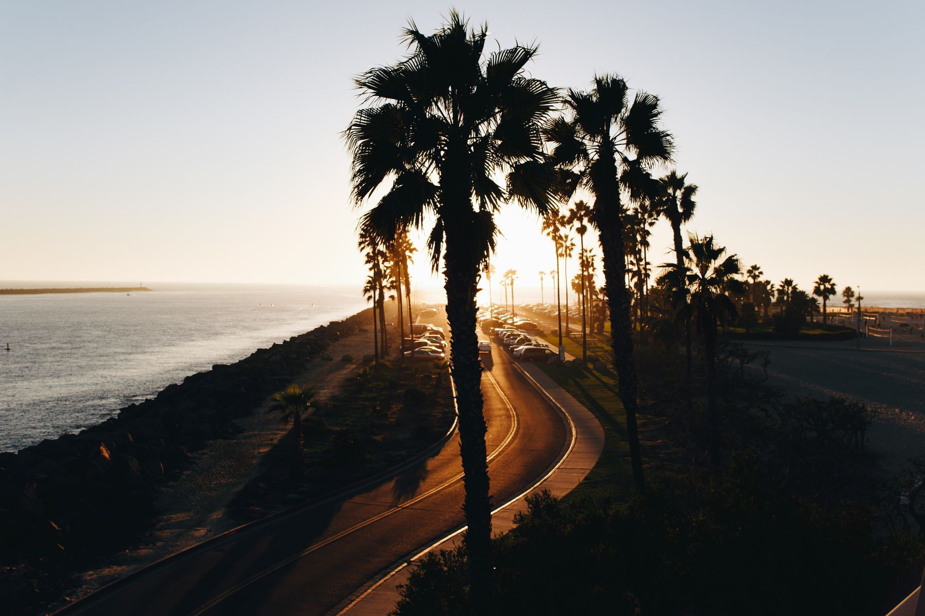Palm trees and beach with winter break sunset