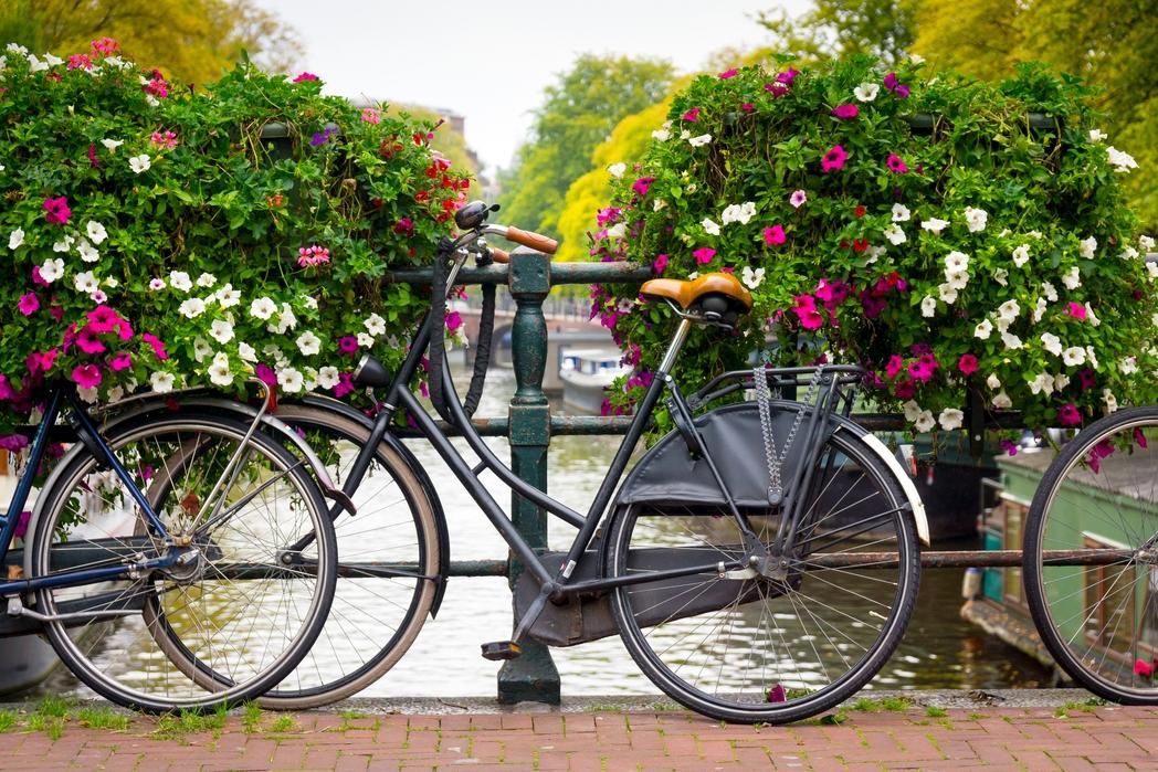 Ποδήλατα σε μια λουλουδιασμένη γέφυρα στο Άμστερνταμ, Ολλανδία - Πάσχα στην Ευρώπη