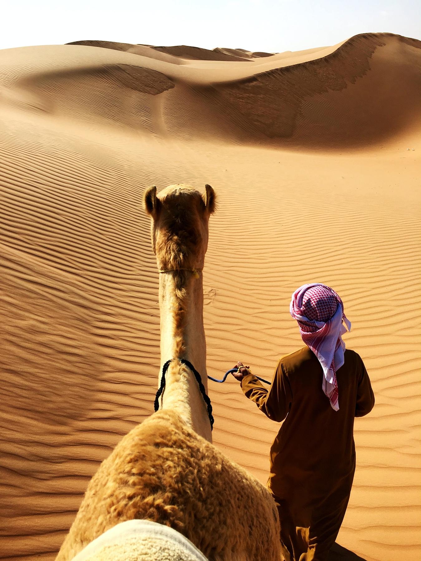 Самые неожиданные направления для поездок: купить билеты в Оман