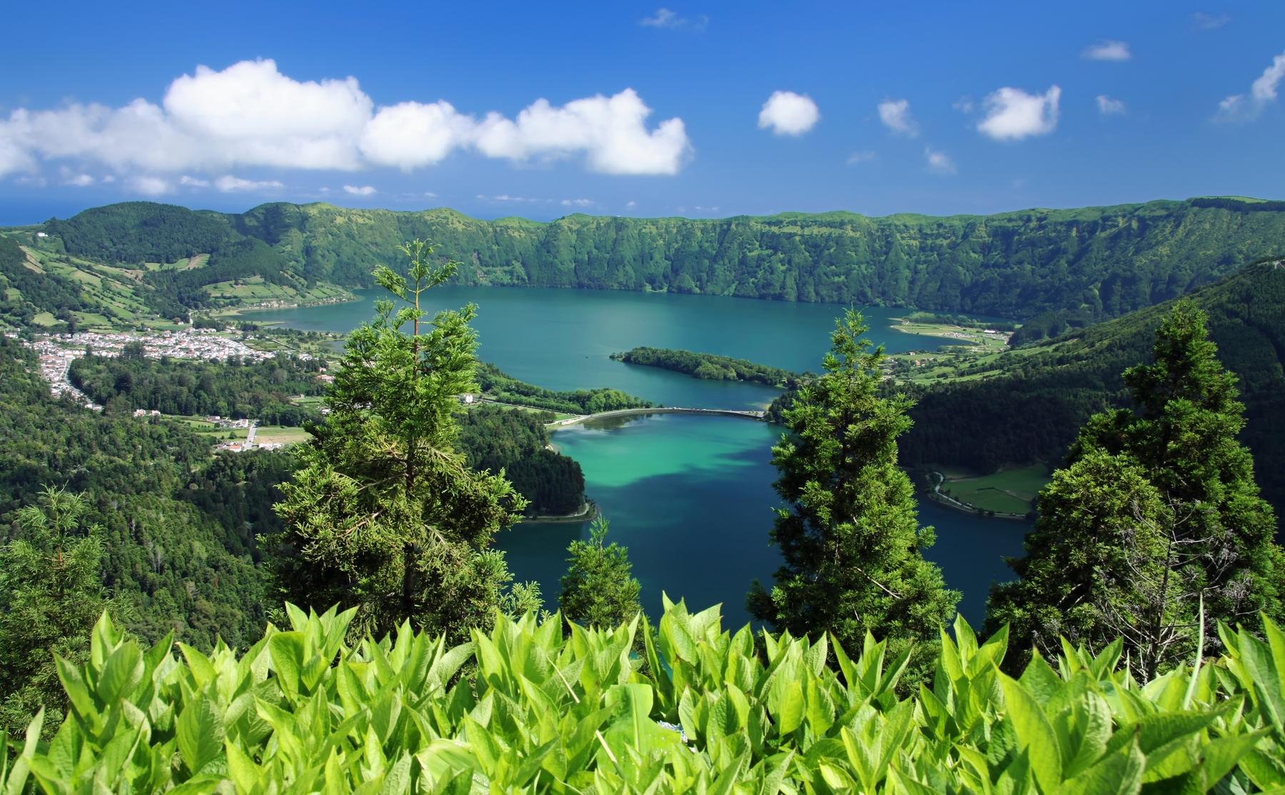 Blick aufs Wasser und Bäume am nachhaltigen Reiseort Azoren in Portugal