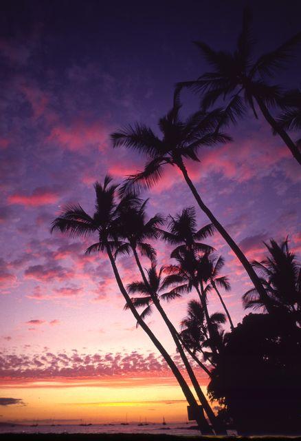 Die beliebtesten Städte der USA: Honolulu, Hawaii
