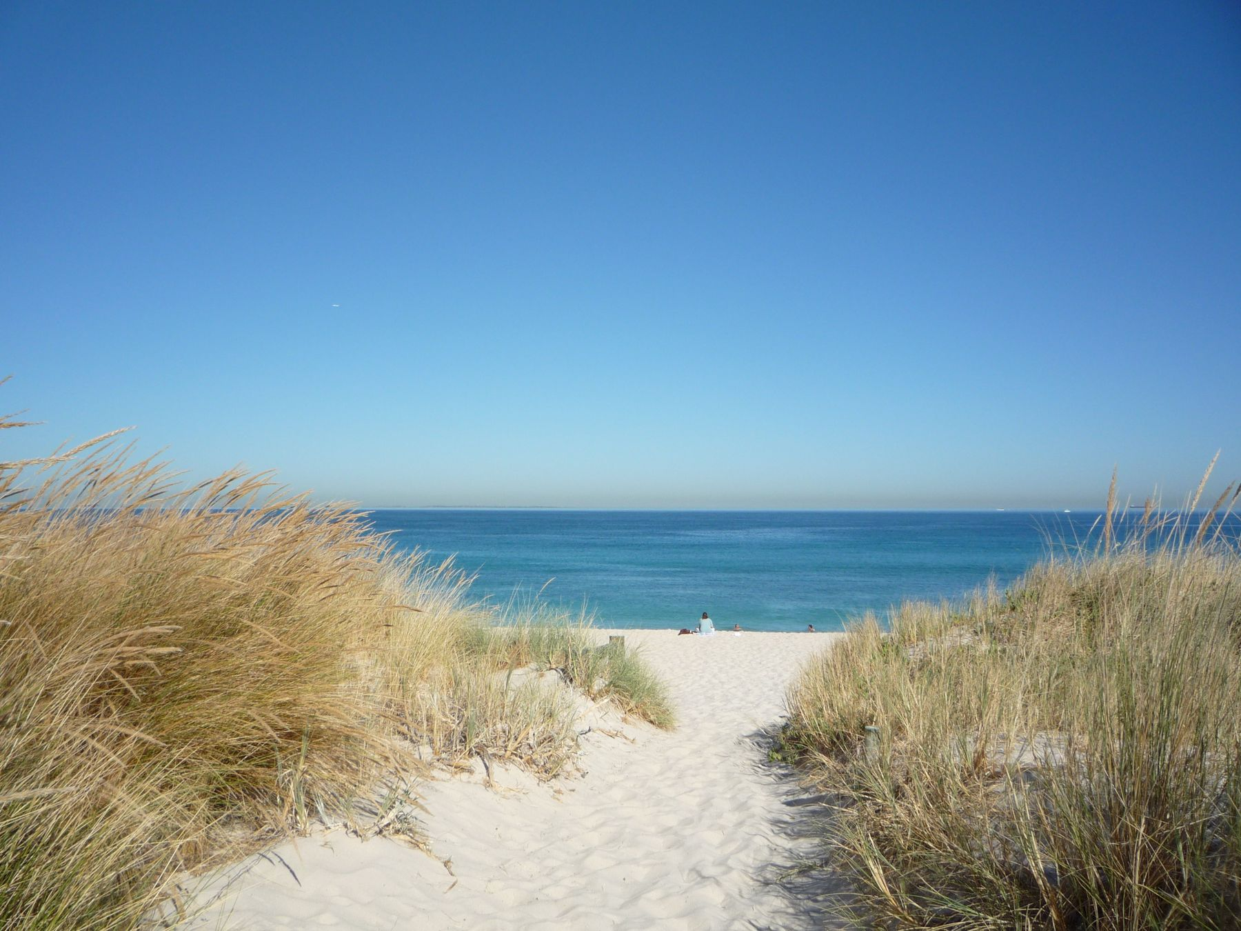 A sandy bath between tall grass leading to South Beach, Australia