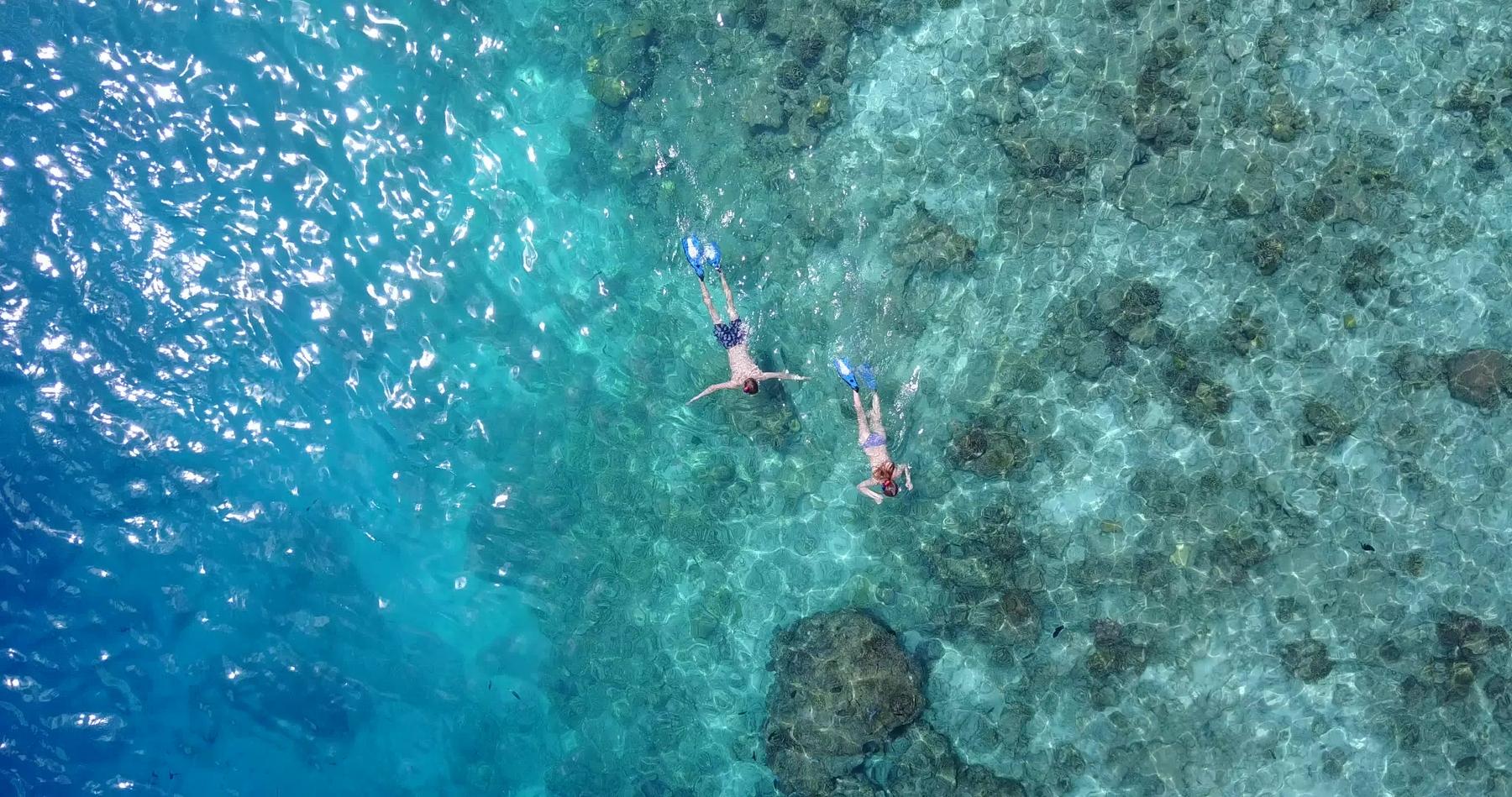 Najlepsze miejsca do nurkowania:  Malediwy