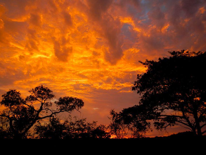 Εντυπωσιακά χρώματα στον ουρανό του πάρκου Κρούγκερ.