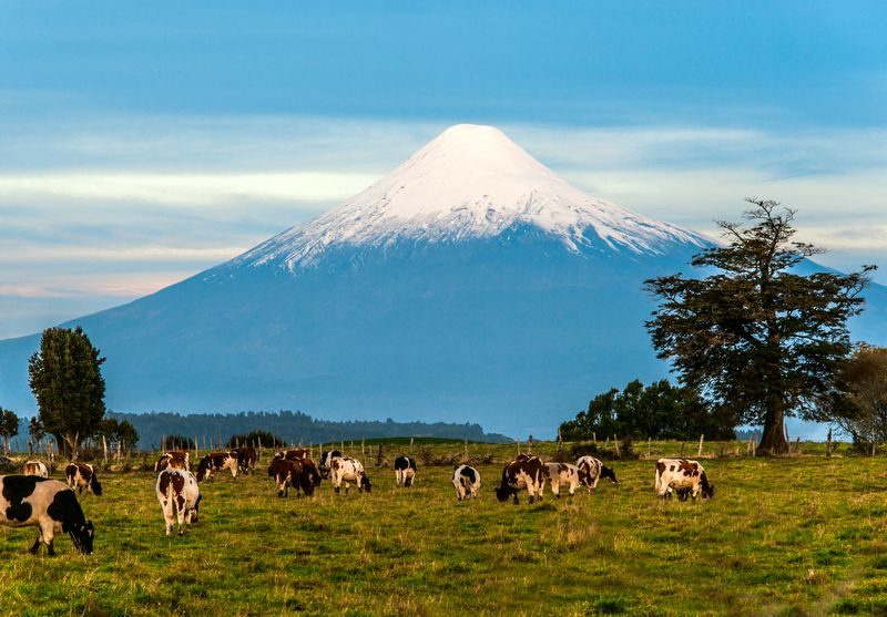 Patagonia cilena, viaggio in Patagonia