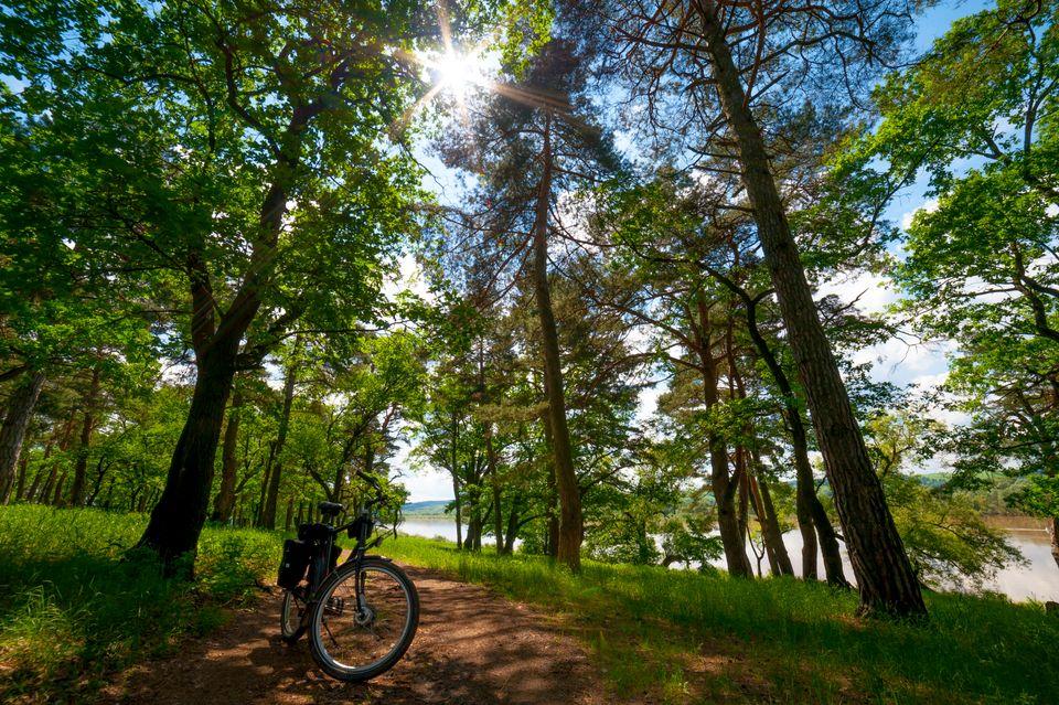 Explore nature this summerbank holiday