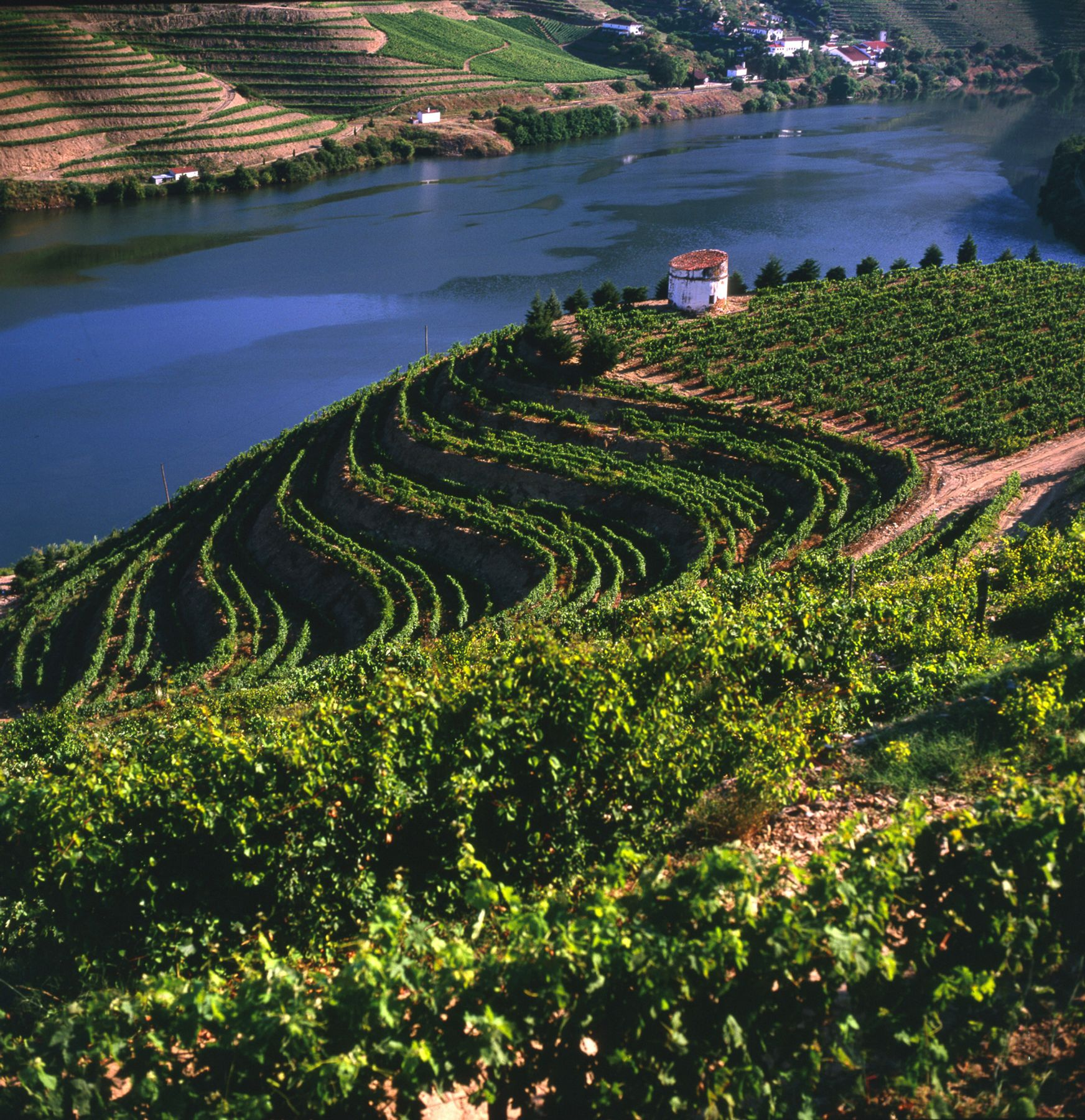 Located some distance upstream from Porto, the Douro Valley is a Portuguese wine region centred on the Douro River and protected from coastal influence by mountain ranges. This region has Portugal's highest wine classification as a Denominação de Origem Controlada (DOC).