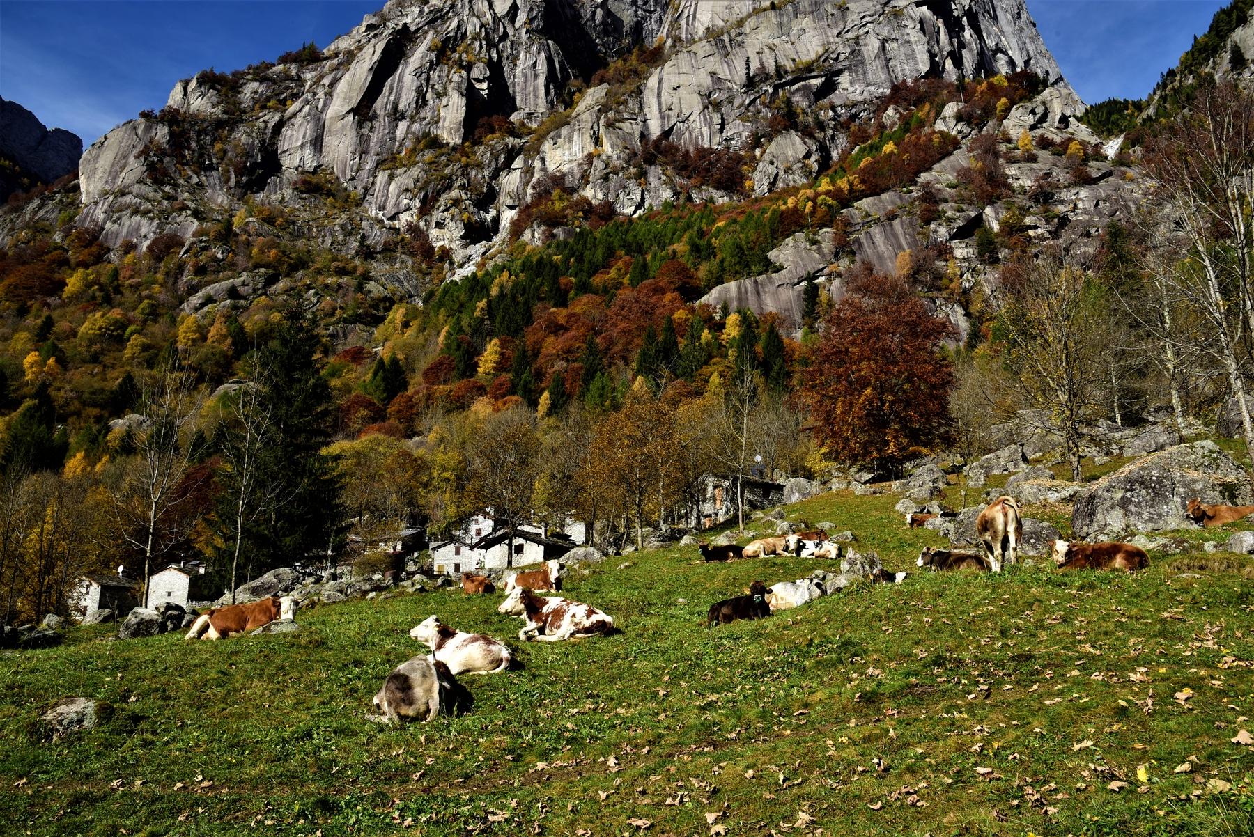Italia autunno