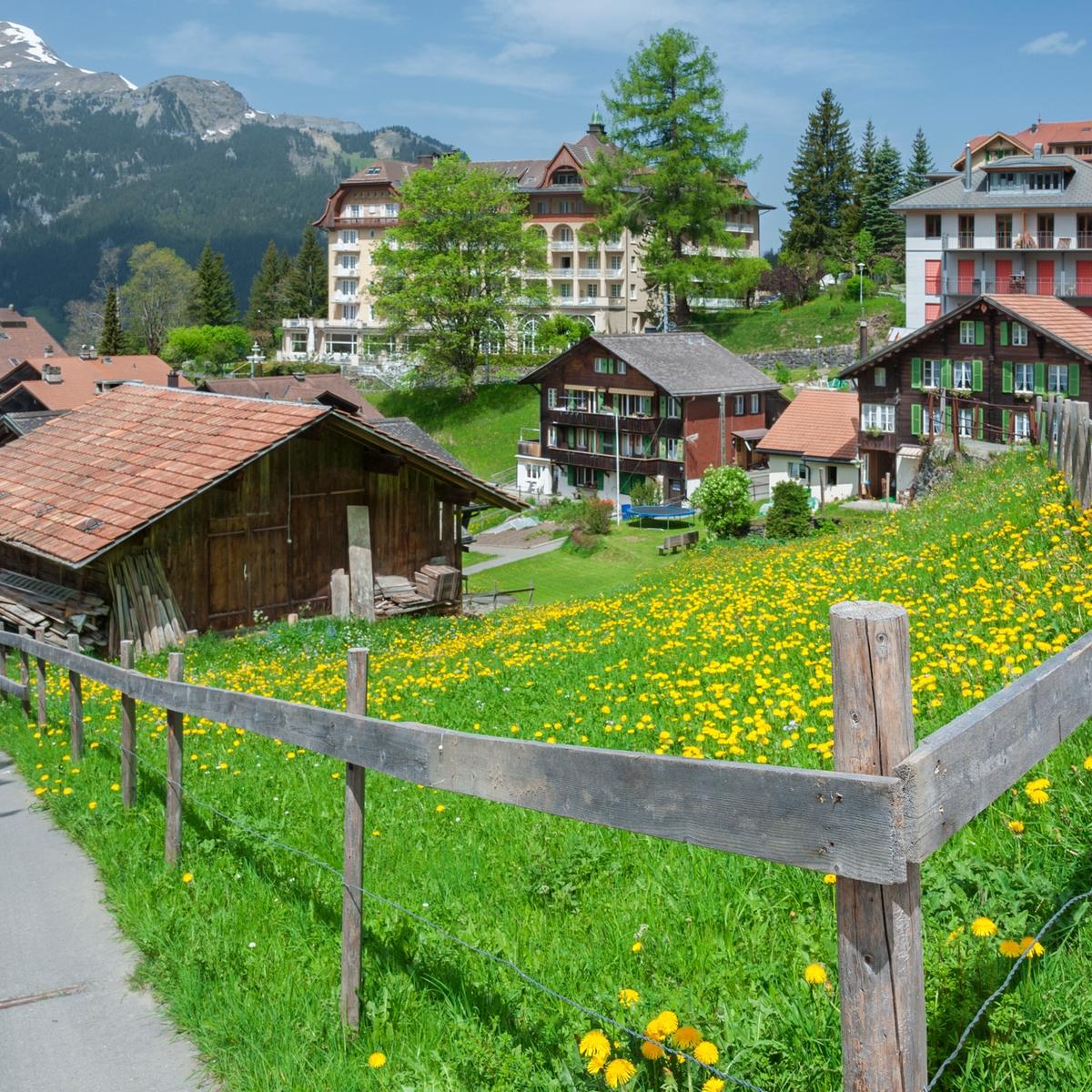 Die schönsten Orte in den Schweizer Alpen: Grindelwald, Bern