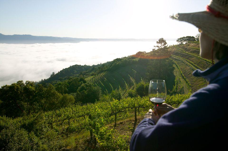 Die schönsten Orte Kaliforniens: Napa Wine Valley, Napa