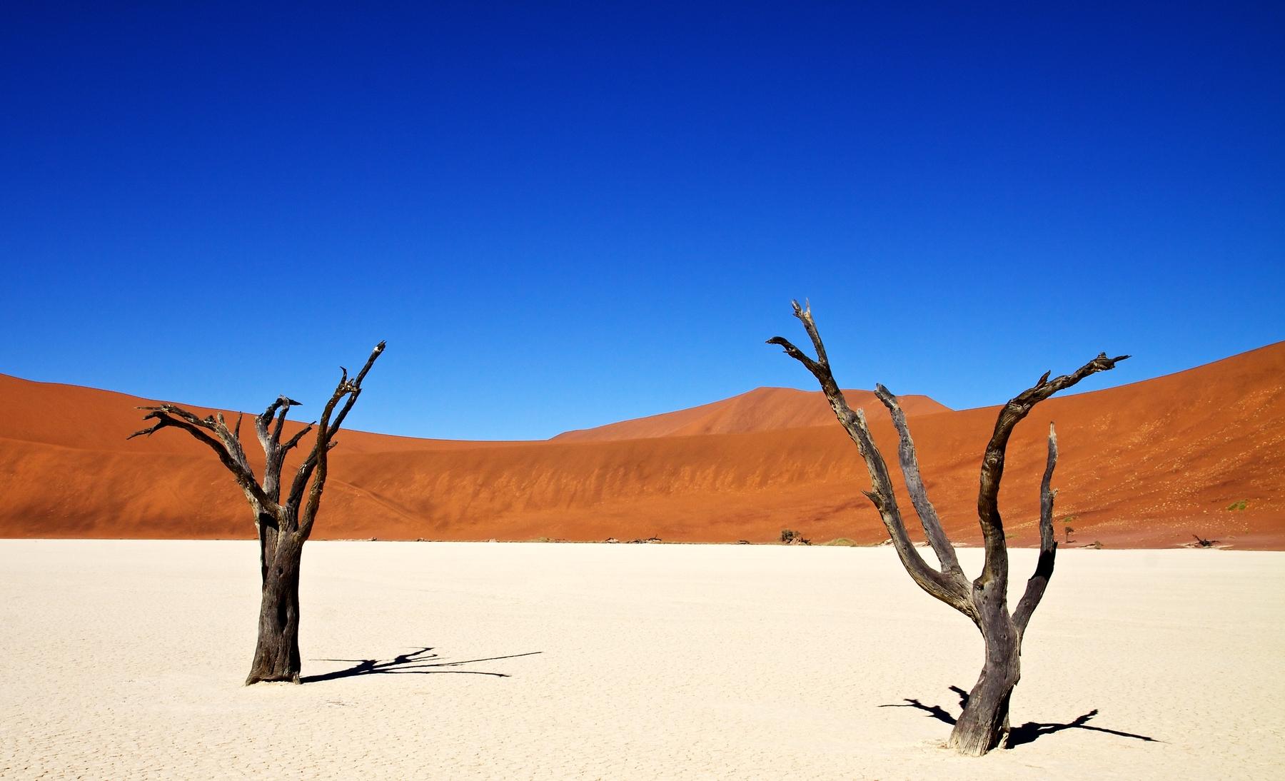 escapadas de naturaleza desierto Deadvlei Namibia