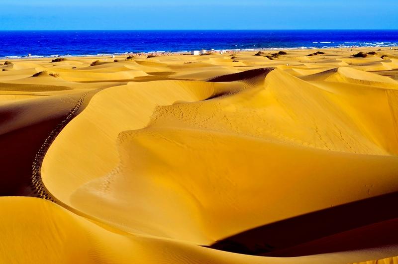 dunas junto al mar