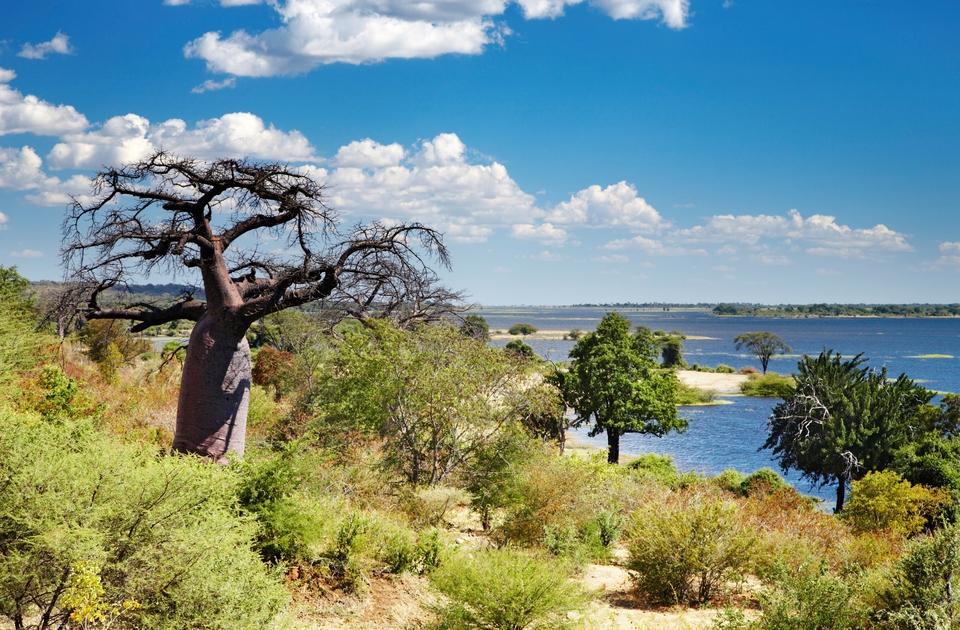Safari in Africa - paesaggio del Botswana