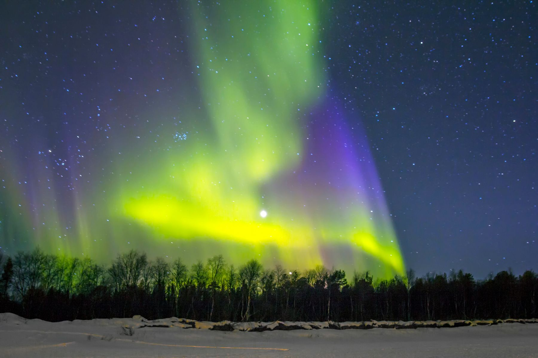 northern lights by the forest at night