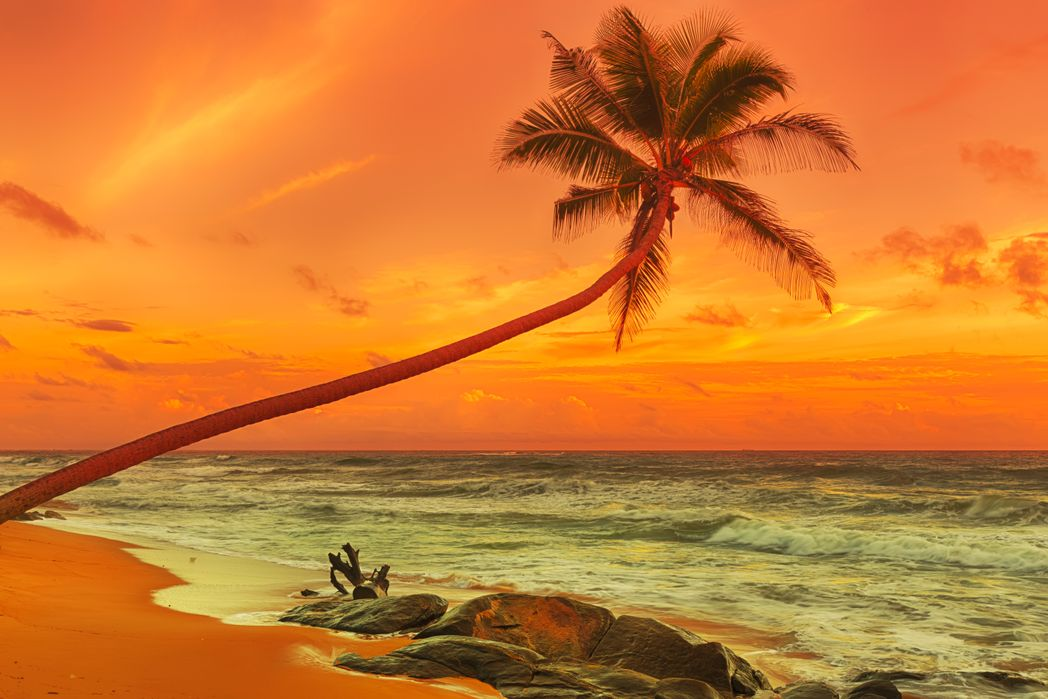 Sunset on a beach - when to go to Sri Lanka