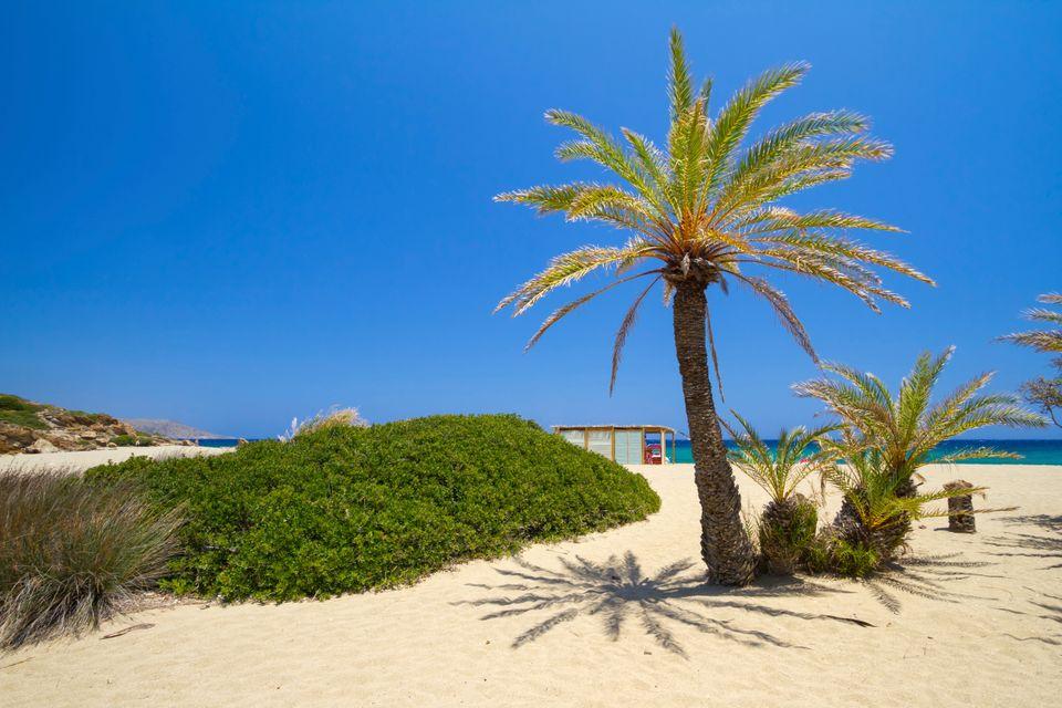Die malerischsten Orte auf Kreta: Palmenstrand von Vai, Region Lasithi