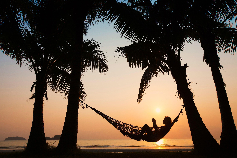 Γυναίκα σε αιώρα ανάμεσα σε φοίνικες το ηλιοβασίλεμα
