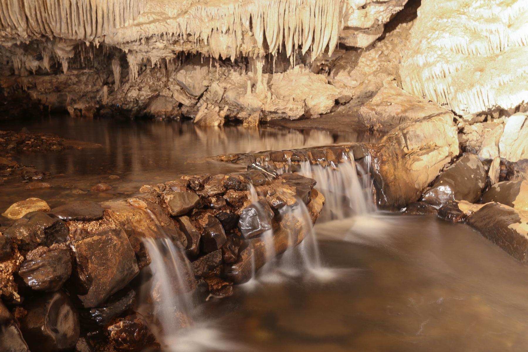 Marakoopa Cave, a limestone cave in Mole Creek Karst national park, north west Tasmania.