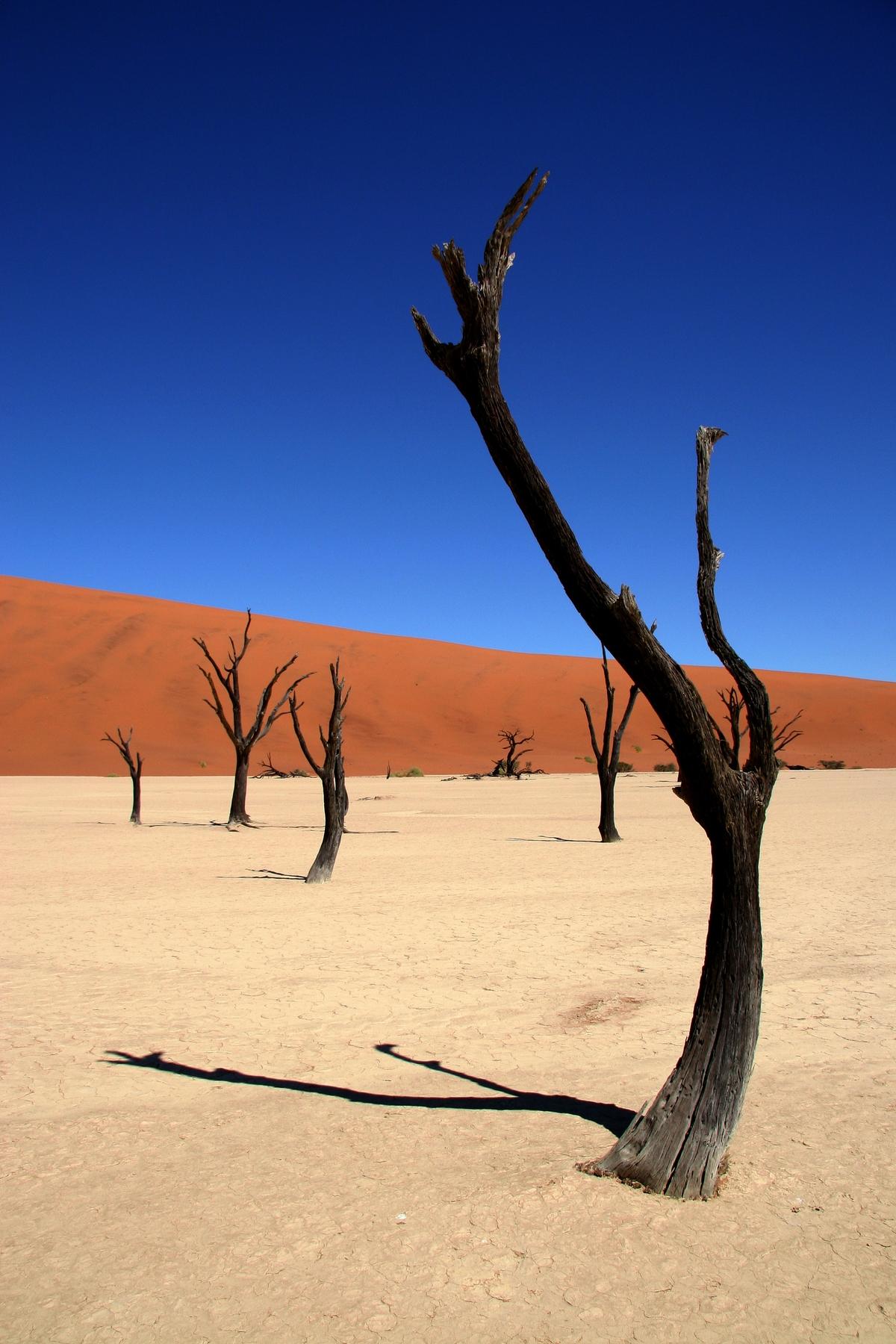 Los 20 lugares más espectaculares del mundo: Namibia