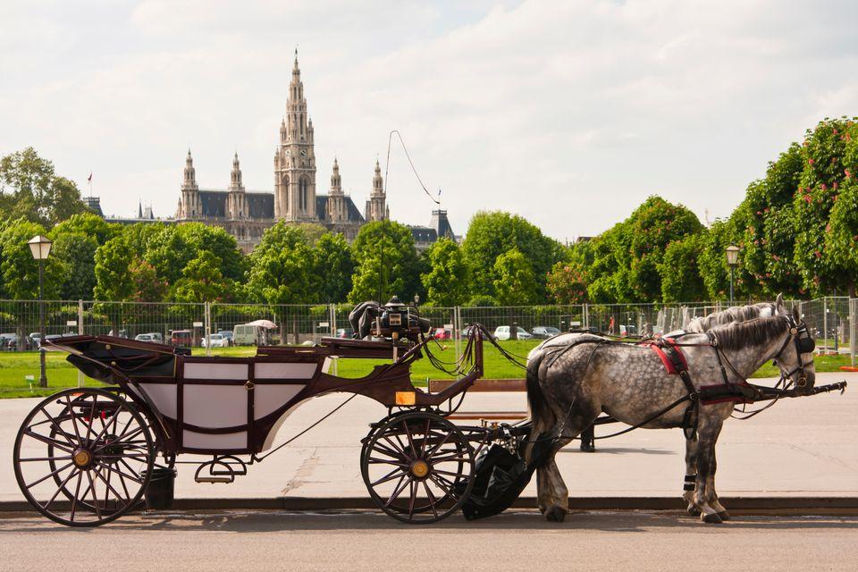 Elegancki Wiedeń przyciąga nie tylko deserami