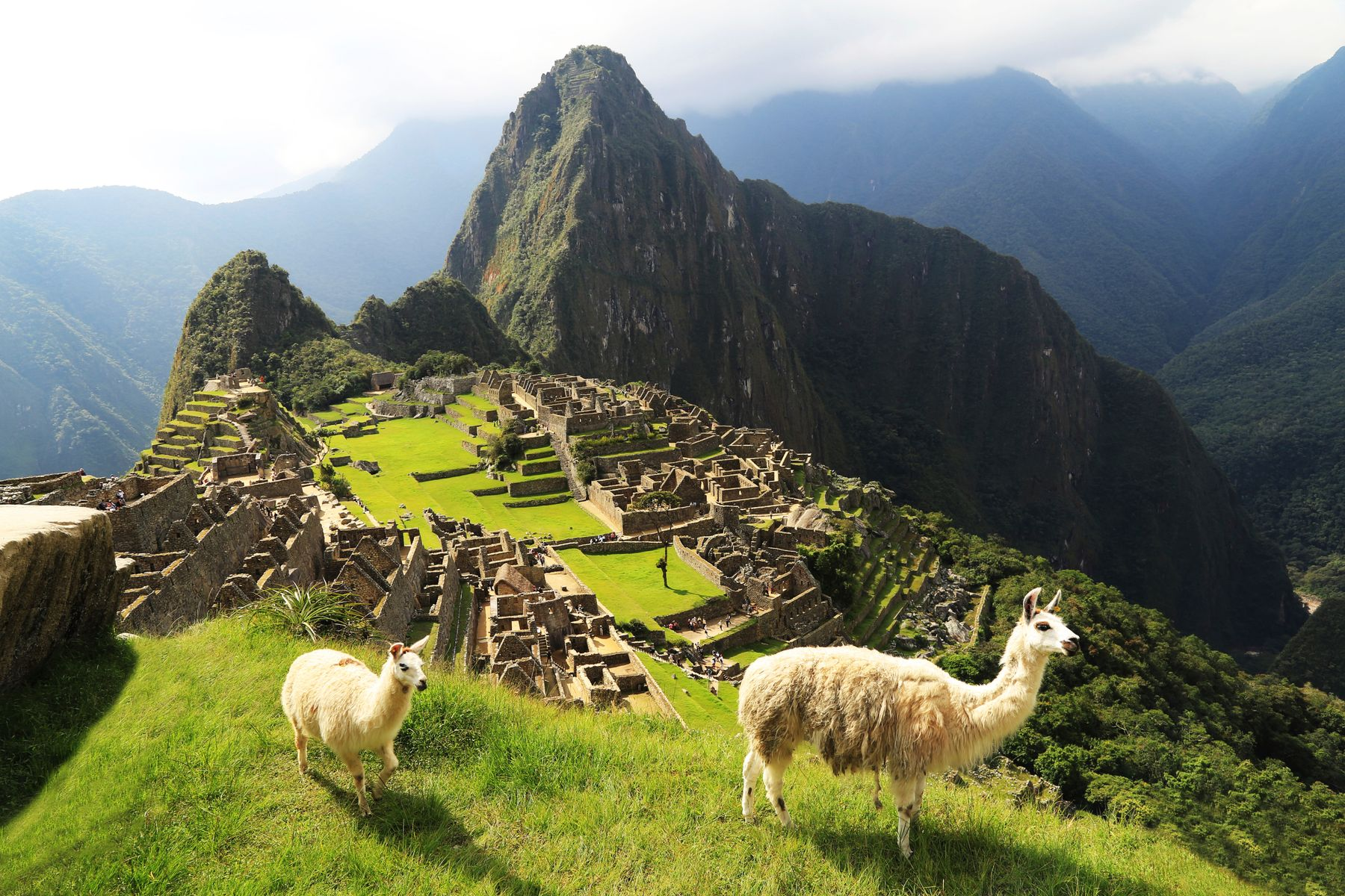 This travel movie includes a stop at Machu Picchu