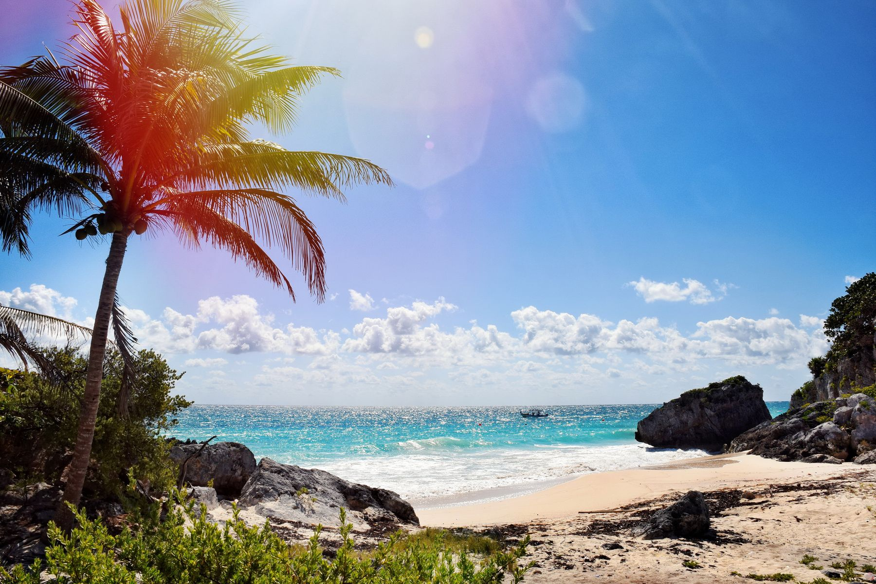 a sunny day on a clear ocean beach surrounded by a palm tree and rocks